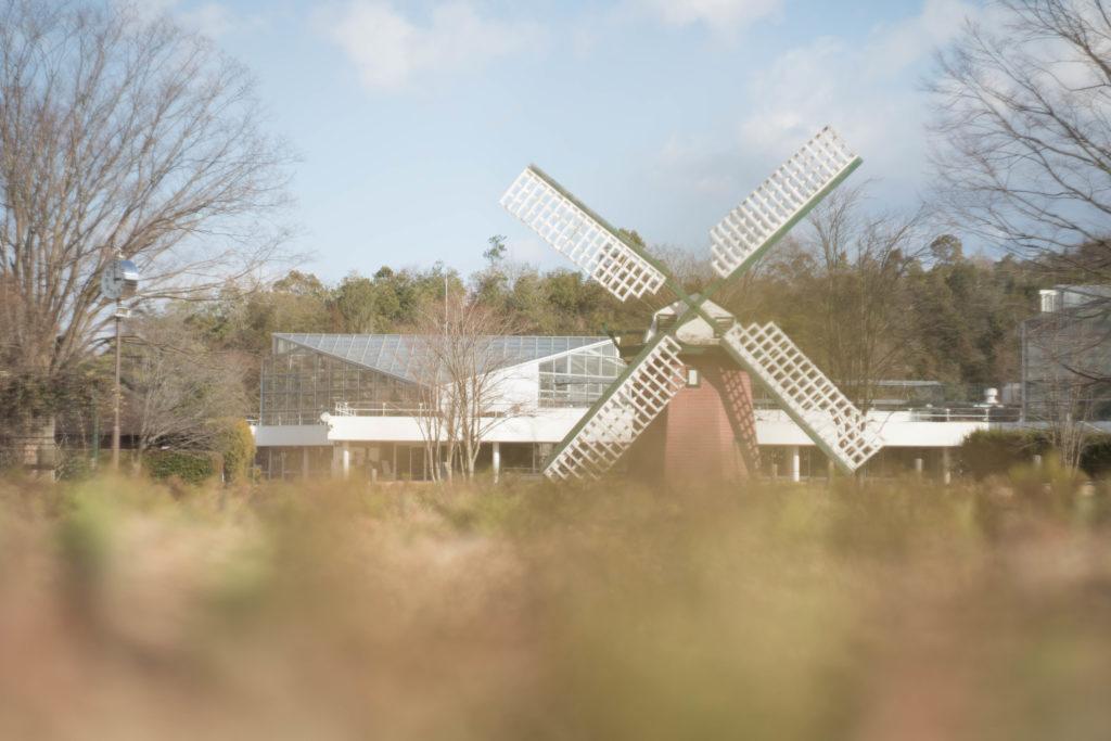兵庫県立フラワーセンターの風車