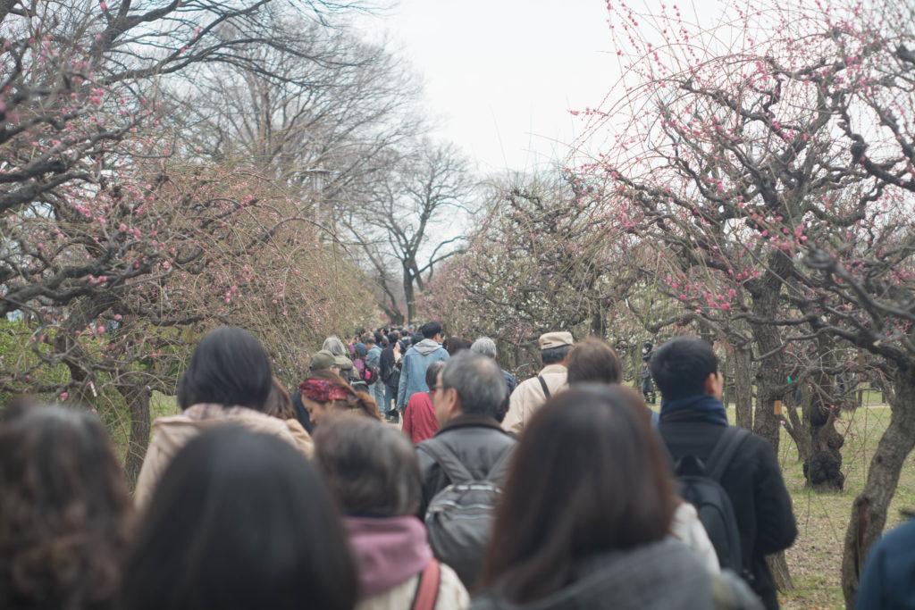 混雑する大阪城