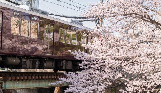 【桜2018】阪急電車と桜が一緒に撮れるスポット「夙川公園」へ行ってきた【兵庫県西宮市】