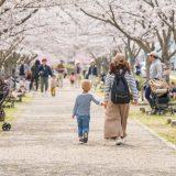 小野桜づつみ回廊11