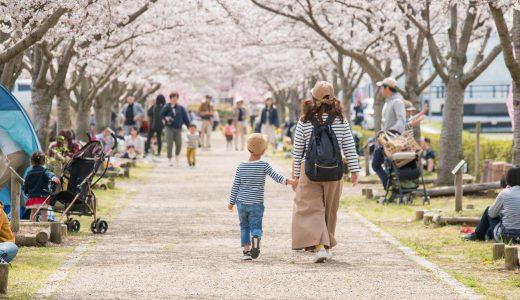 【桜2018】西日本最大級の桜並木「おの桜づつみ回廊」へ行ってきた【兵庫県小野市】