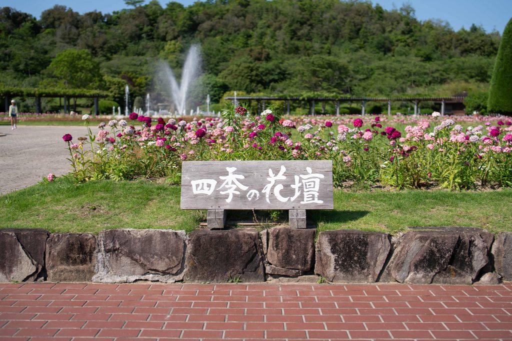兵庫県立フラワーセンター 四季の花壇