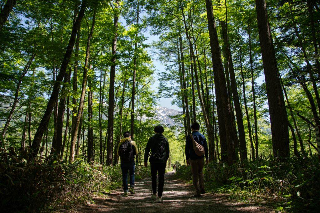 上高地ハイキングコースを歩く人
