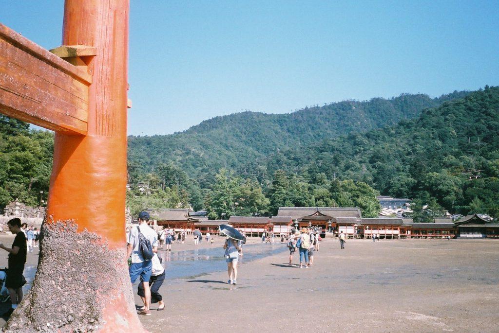 厳島神社 全体