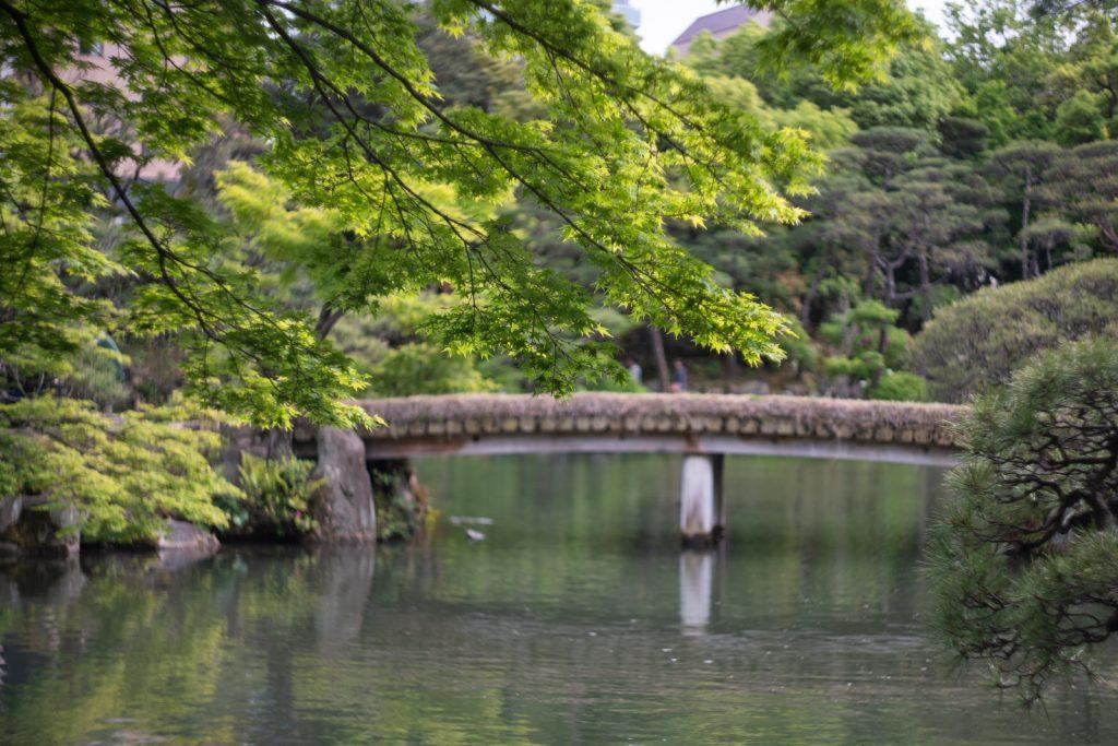 相楽園の橋