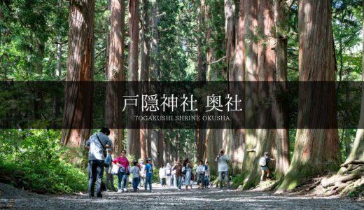 樹齢400年以上の杉並木、長野県「戸隠神社 奥社」が美しい【観光スポット】