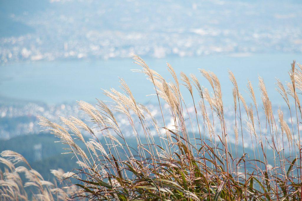 高ボッチ高原からの諏訪湖