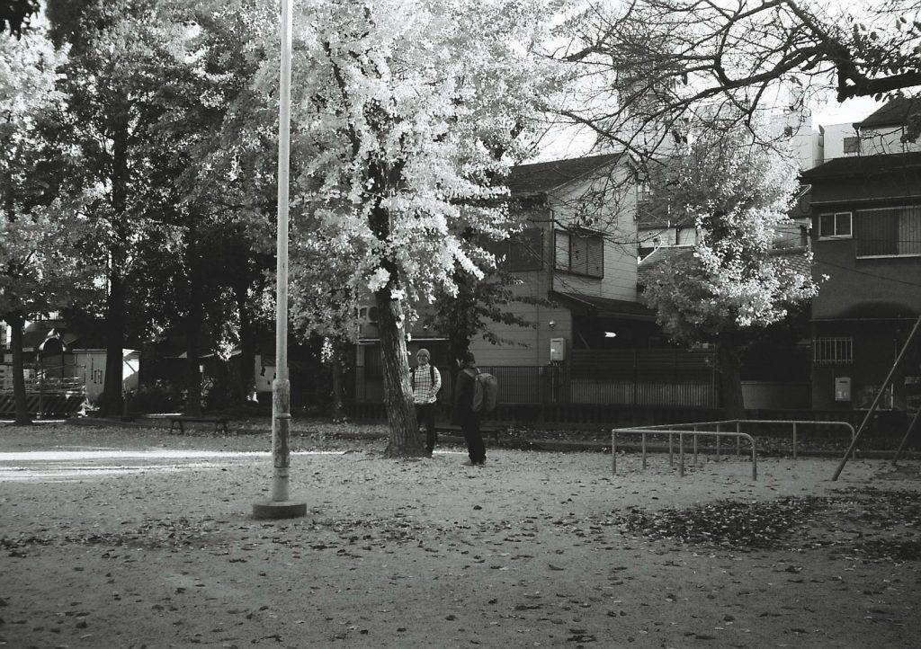 モノクロの公園