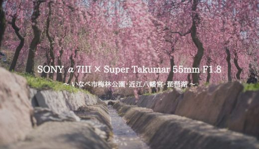 【作例】SONY α7III × オールドレンズ『Super Takumar 55mm F1.8』で梅林公園・琵琶湖を撮ってきた