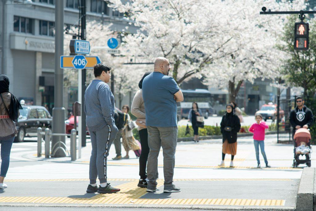 外国人と桜