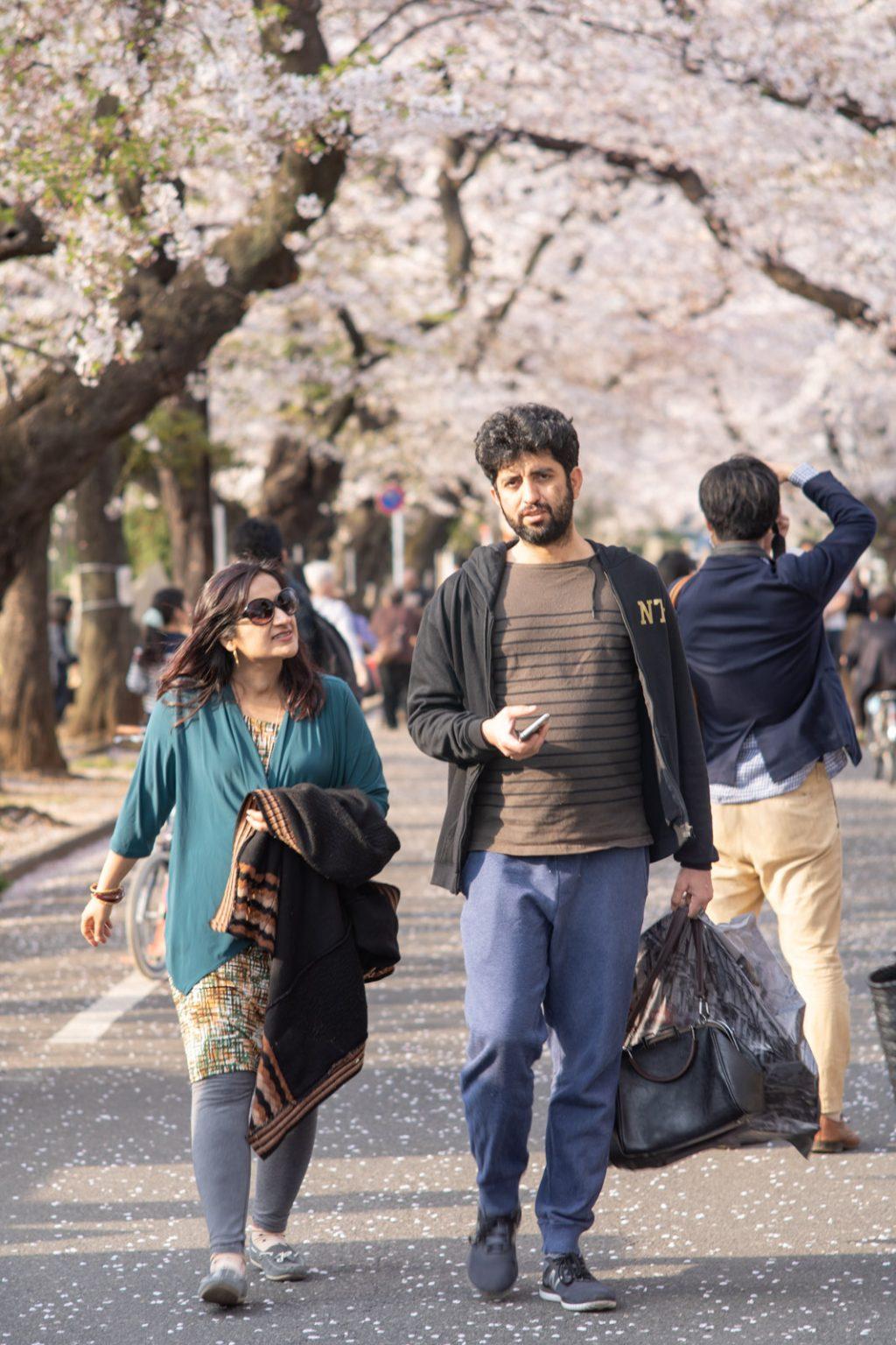 桜と外国人