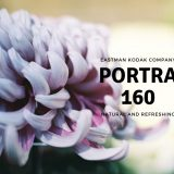 PORTRA160 アイキャッチ