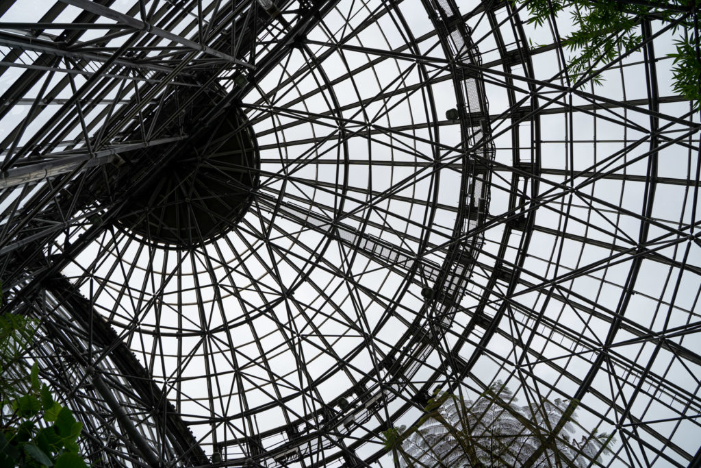 夢の島熱帯植物園 屋根