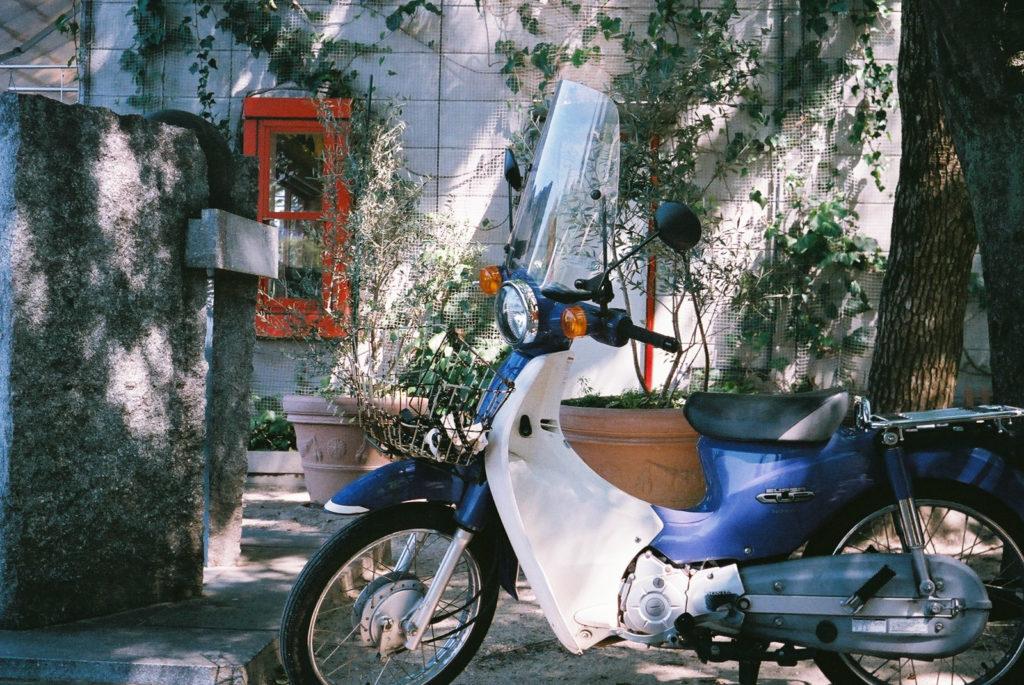 SUPERIA400 作例