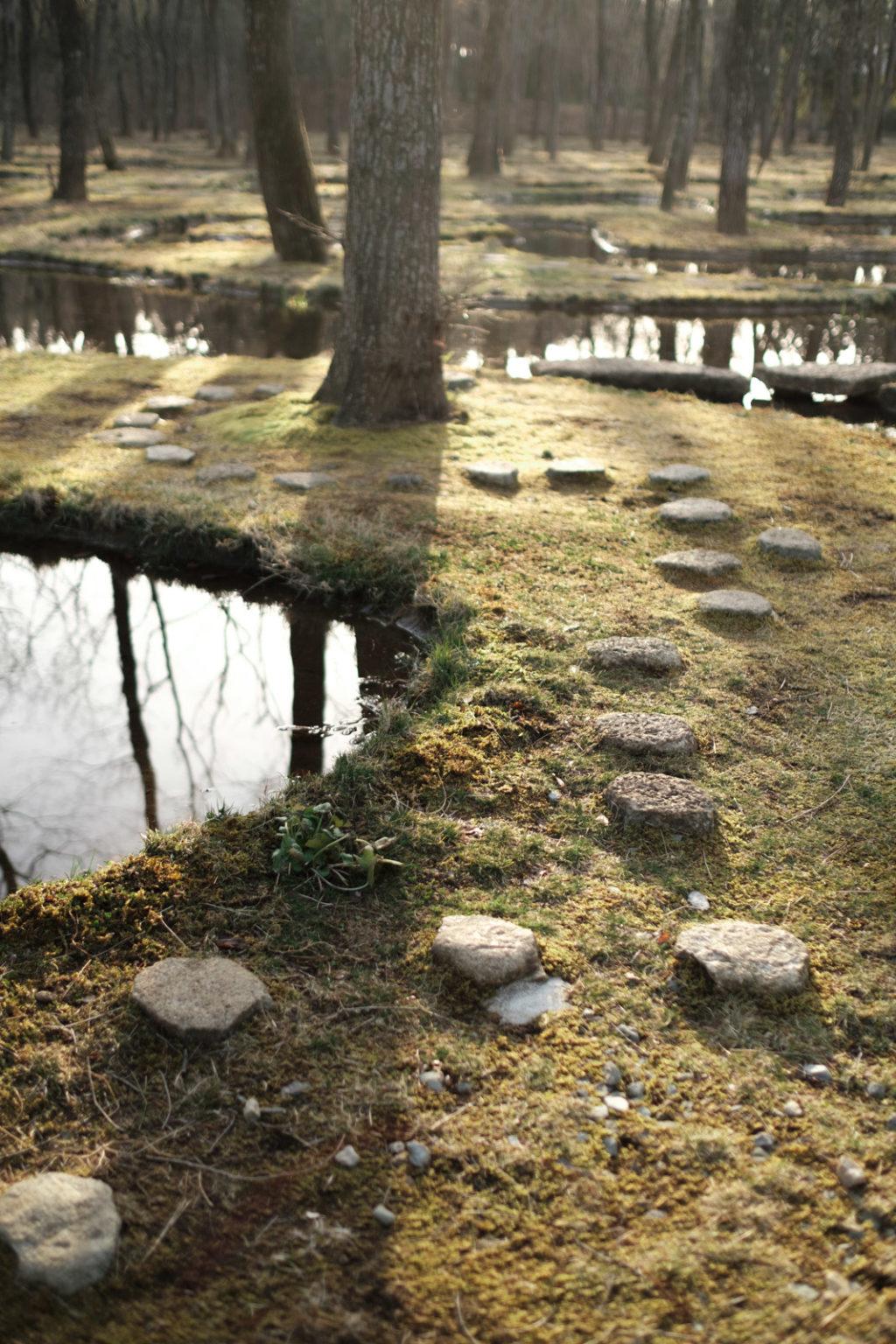 アートビオトープ那須 水庭