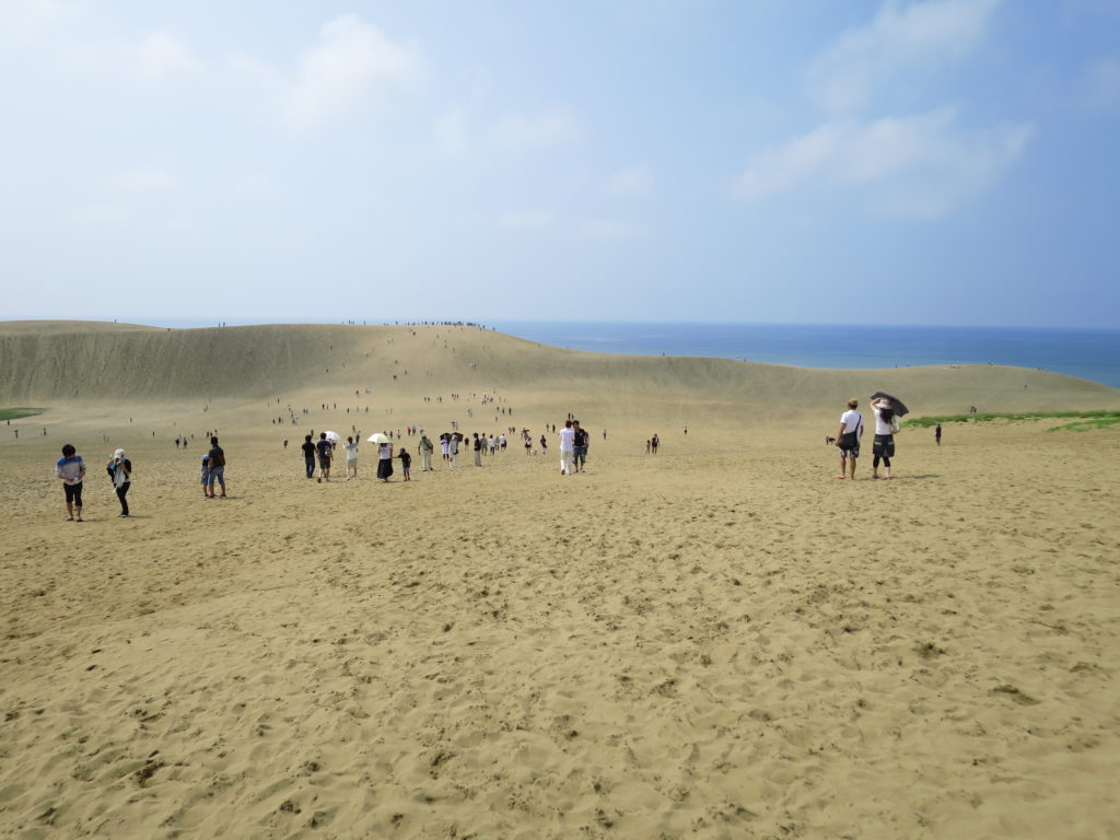 鳥取砂丘 2014年